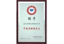 授予中国活动铅笔王